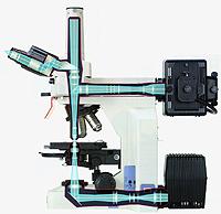Microscopio donde se muestra las rutas de iluminación y los elementos básicos de alineación